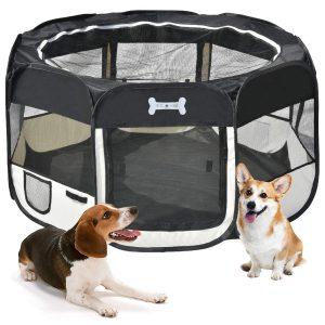 mc star box per cani