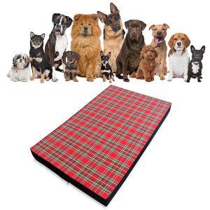 materassini per cani